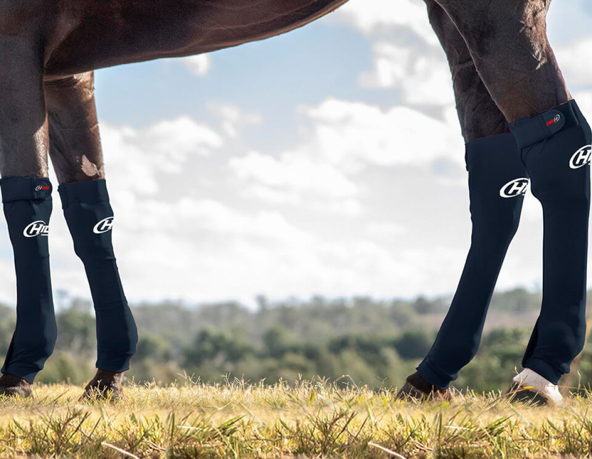 EQUINE SEAMLESS COMPRESSION SOCK BLACK