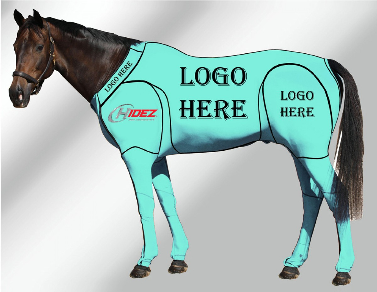 EQUINE CUSTOMISED SUIT AQUAMARINE
