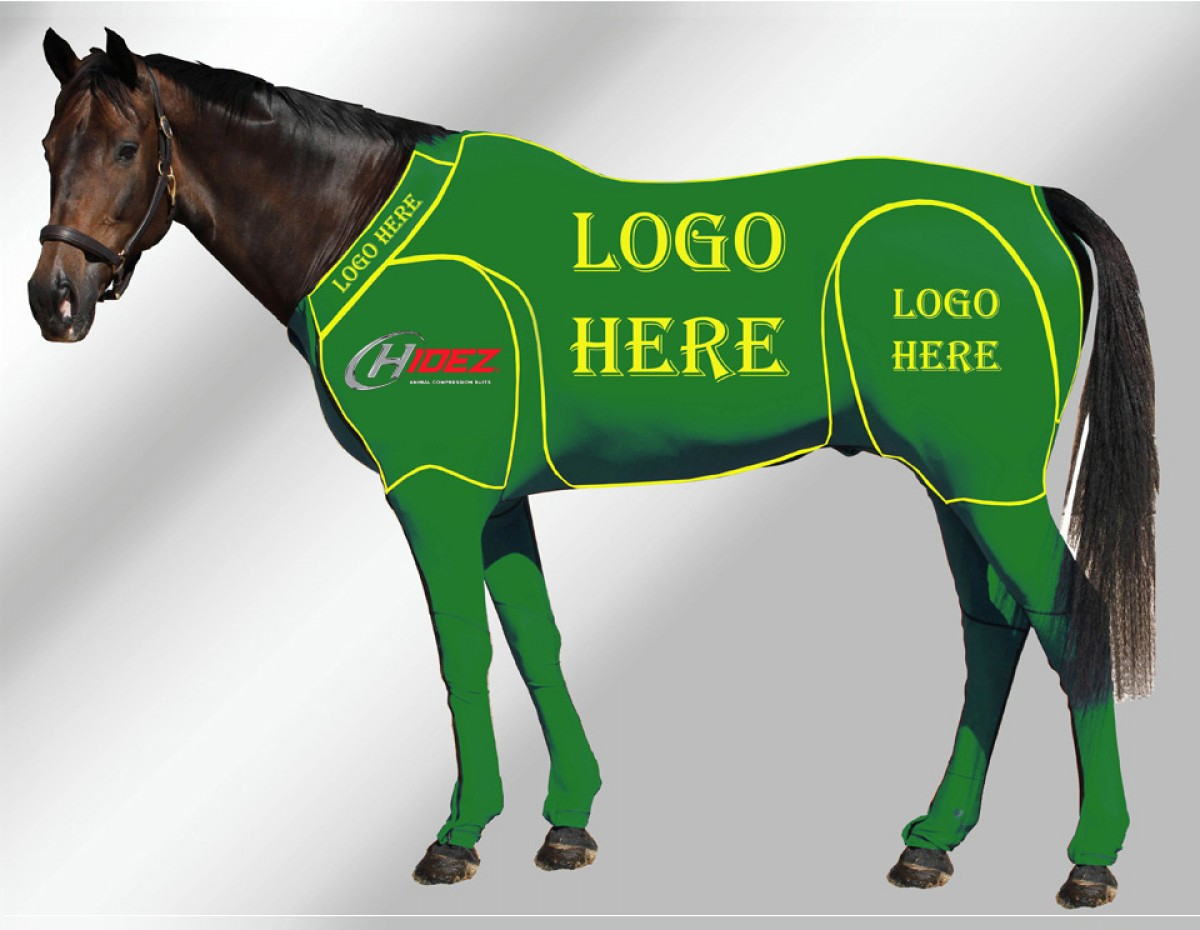 EQUINE CUSTOMISED SUIT GREEN