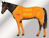 EQUINE CUSTOMISED SUIT ORANGE