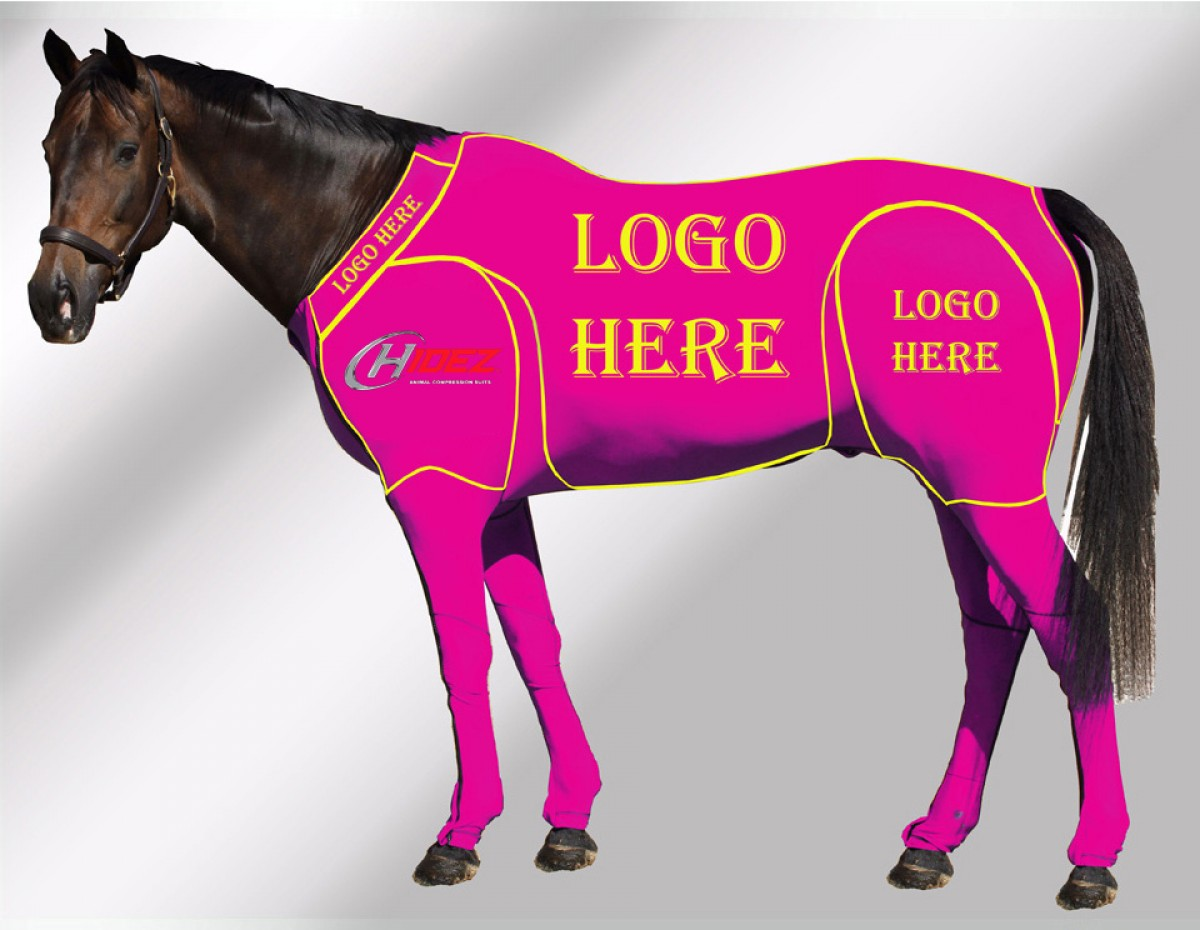 EQUINE CUSTOMISED SUIT PINK