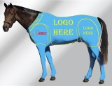 EQUINE CUSTOMISED SUIT TURQUOISE