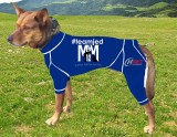 CANINE COMPRESSION ANXIETY SUIT KELPIE