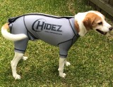 CANINE COMPRESSION ANXIETY SUIT GREY
