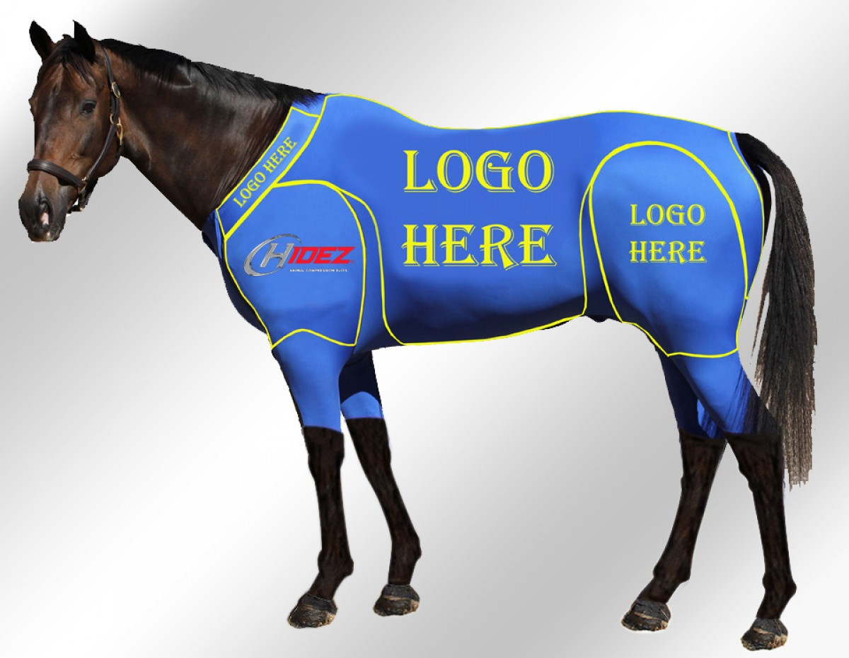 EQUINE ACTIVE CUSTOMISED SUIT BLUE