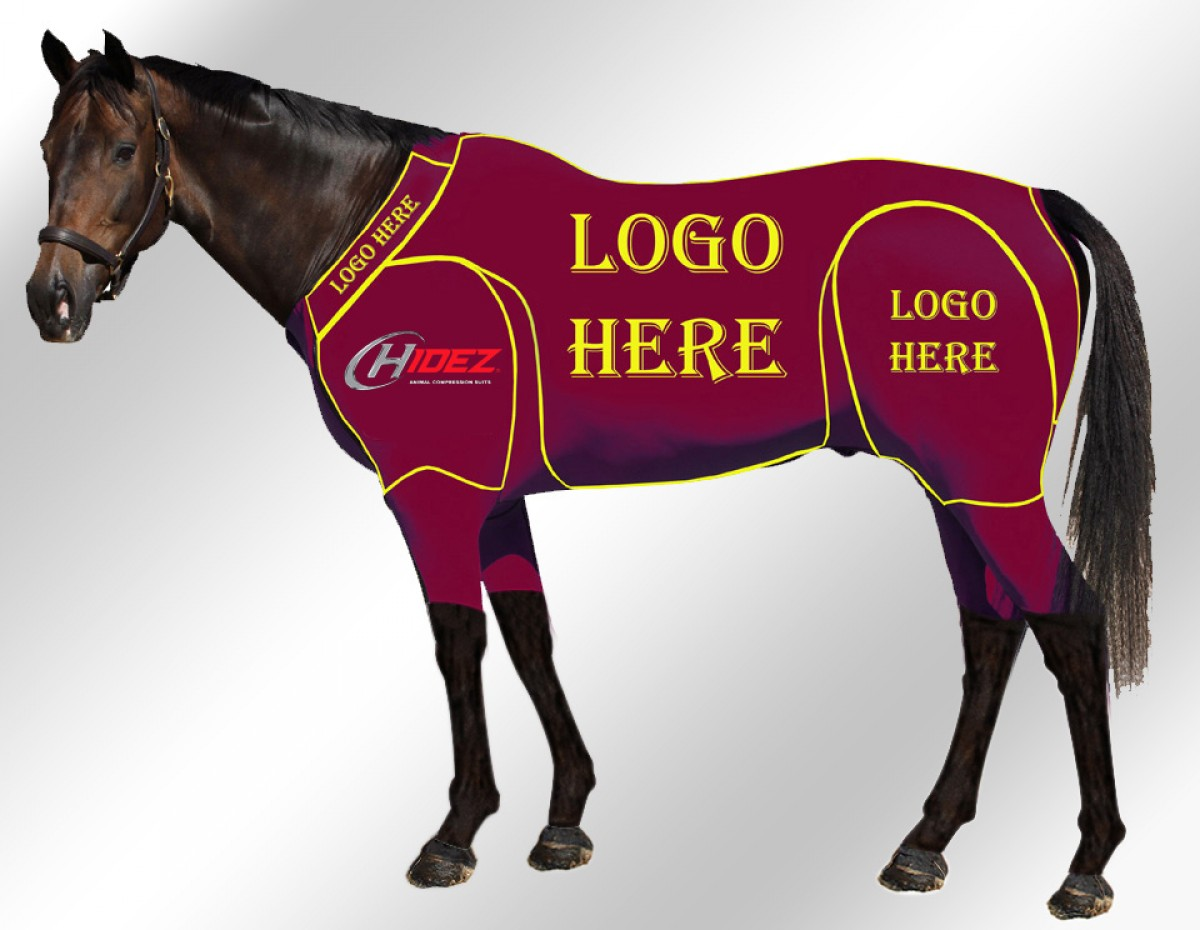 EQUINE ACTIVE CUSTOMISED SUIT MAROON