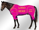 EQUINE ACTIVE CUSTOMISED SUIT PINK