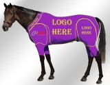 EQUINE ACTIVE CUSTOMISED SUIT PURPLE