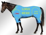 EQUINE ACTIVE CUSTOMISED SUIT TURQUOISE