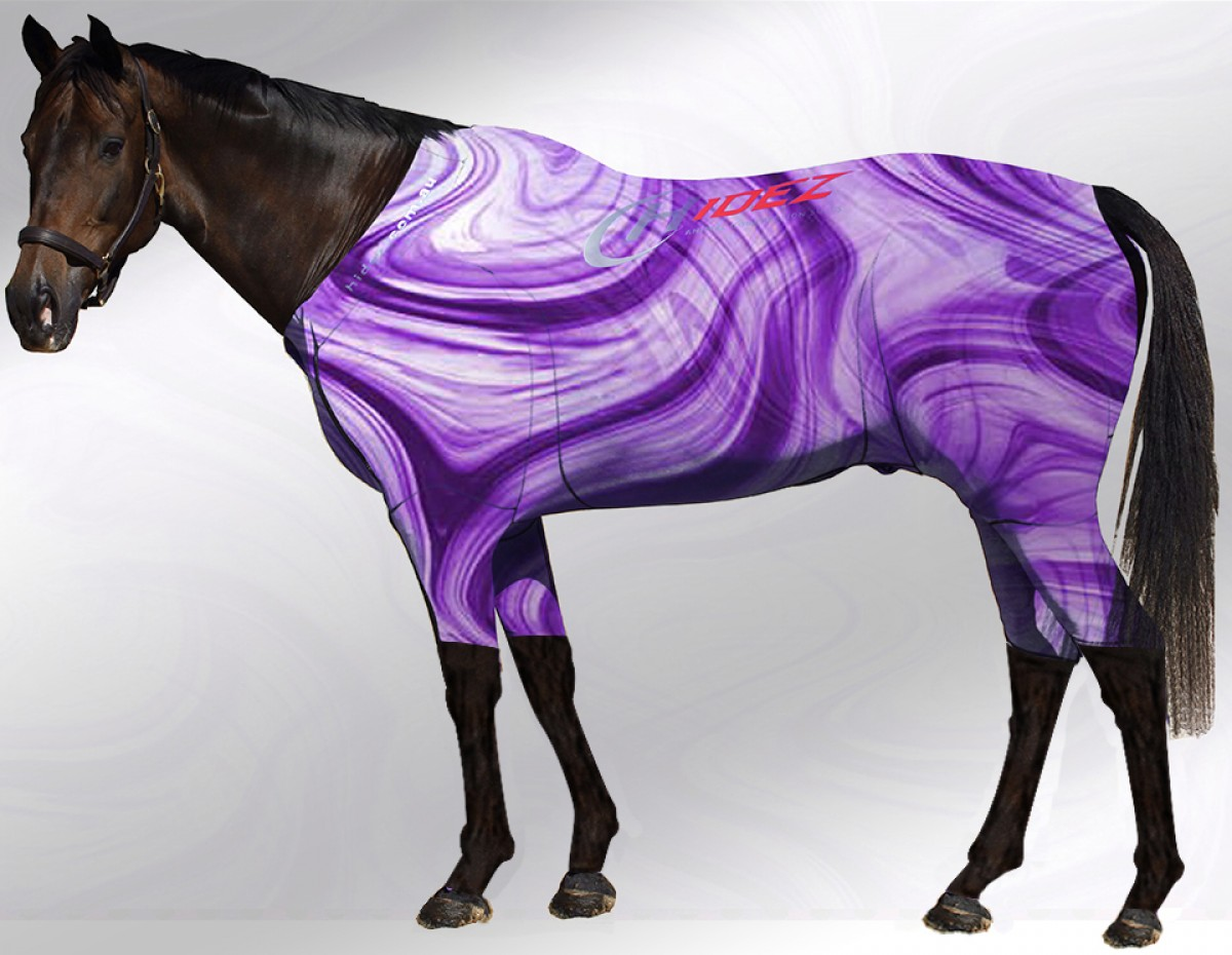 EQUINE ACTIVE  SUIT PRINTED SWIRLS PURPLE WHITE