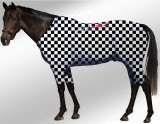 EQUINE ACTIVE  SUIT PRINTED CHECKERED