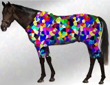 EQUINE ACTIVE  SUIT PRINTED KALEIDOSCOPE