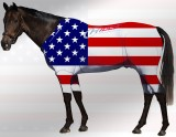 EQUINE ACTIVE  SUIT PRINTED USA STARS & STRIPES