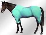 EQUINE-ACTIVE-SUIT-AQUAMARINE