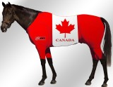 EQUINE-ACTIVE-SUIT-PRINTED-CANADA