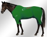 EQUINE-ACTIVE-SUIT-PRINTED-GREEN-