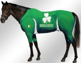 EQUINE-ACTIVE-SUIT-PRINTED-IRELAND