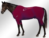EQUINE-ACTIVE-SUIT-PRINTED-MAROON