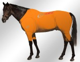 EQUINE-ACTIVE-SUIT-PRINTED-ORANGE-