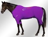 EQUINE-ACTIVE-SUIT-PRINTED-PURPLE