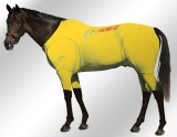 EQUINE-ACTIVE-SUIT-PRINTED-YELLOW-