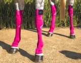 EQUINE COMPRESSION SOCK FUCHSIA