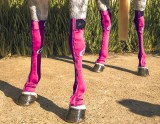 EQUINE COMPRESSION SOCK MAGENTA