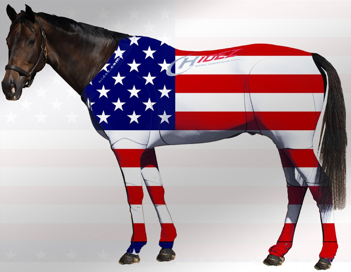 EQUINE SUIT PRINTED USA STARS & STRIPES