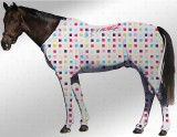 EQUINE SUIT PRINTED MULTI CHECK