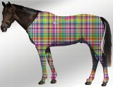 EQUINE SUIT PRINTED RAINBOW