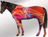 EQUINE SUIT PRINTED NEON LIGHTS