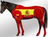 EQUINE SUIT PRINTED SPAIN SUIT 1