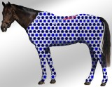 EQUINE SUIT PRINTED STARS WHITE-BLUE-NAVY