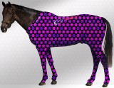 EQUINE SUIT PRINTED STARS BLACK-PURPLE-PINK