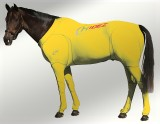 EQUINE SUIT PRINTED YELLOW