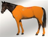 EQUINE SUIT PRINTED ORANGE