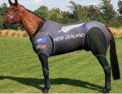 QUALITY INVASION NZ
