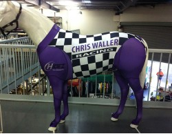 WALL CHIRIS WALLER RACING STABLES