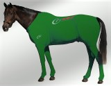 EQUINE SUIT PRINTED GREEN