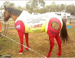 CUSTOM SUIT BARREL RACING N