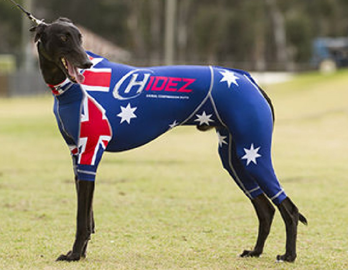 RACING-SUIT-PRINTED-AUSTRALIA