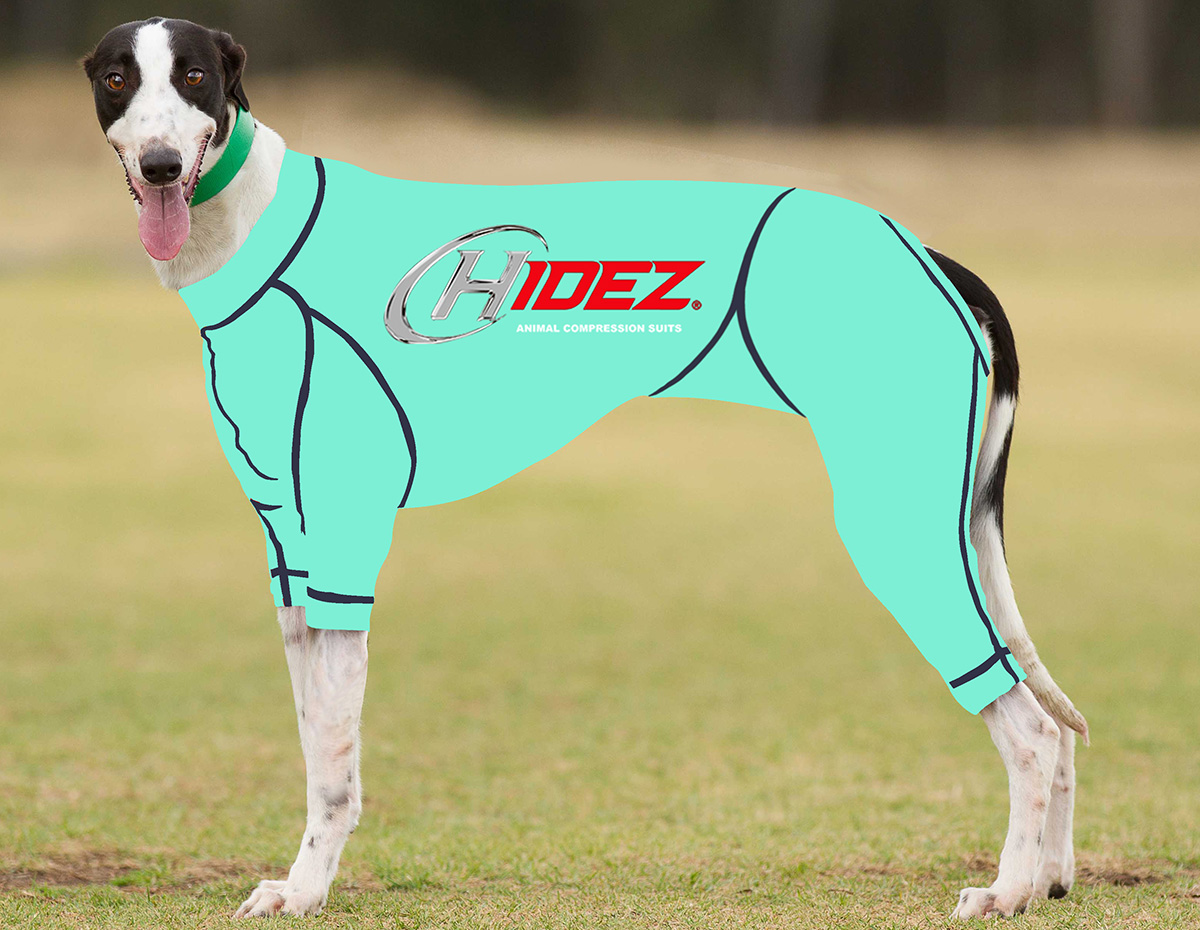 RACING-SUIT-PRINTED-AQUAMARINE