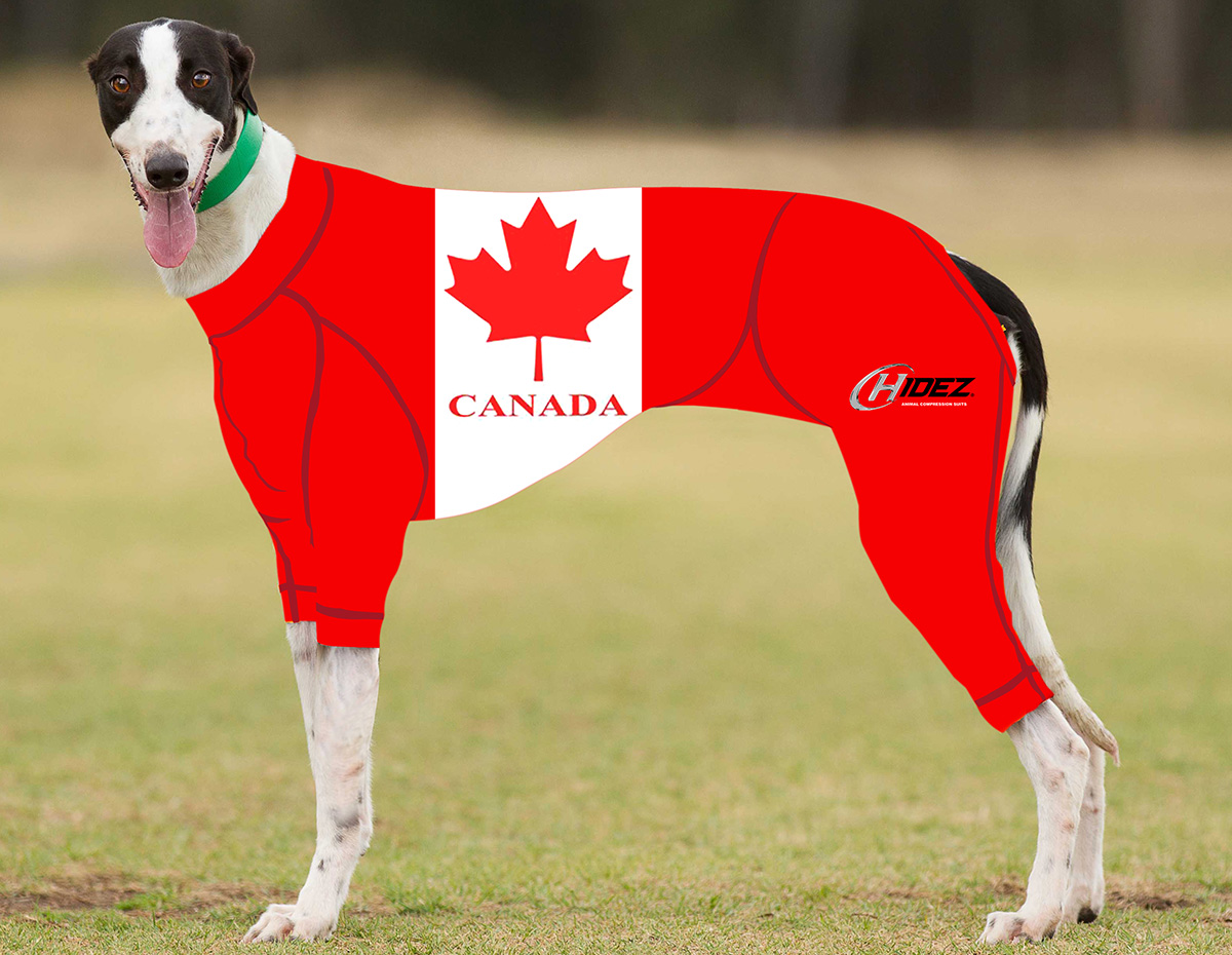 RACING-SUIT-PRINTED-CANADA