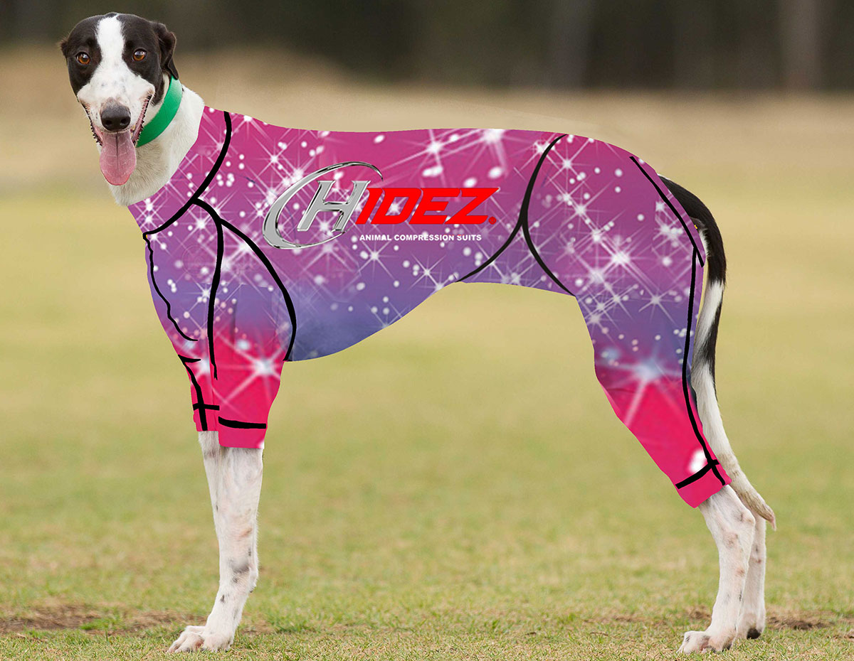 RACING-SUIT-PRINTED-GLITTER