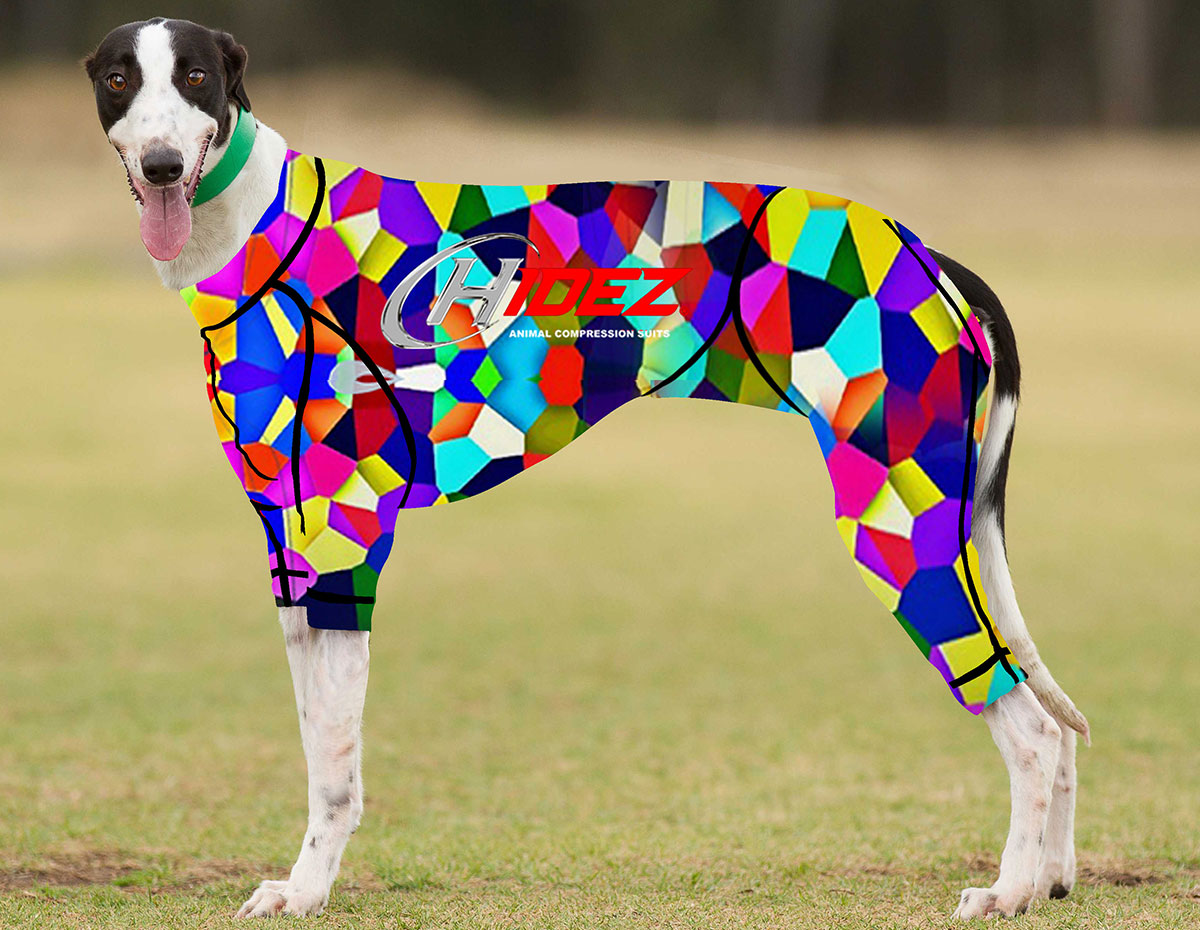 RACING-SUIT-PRINTED-KALEIDOSCOPE