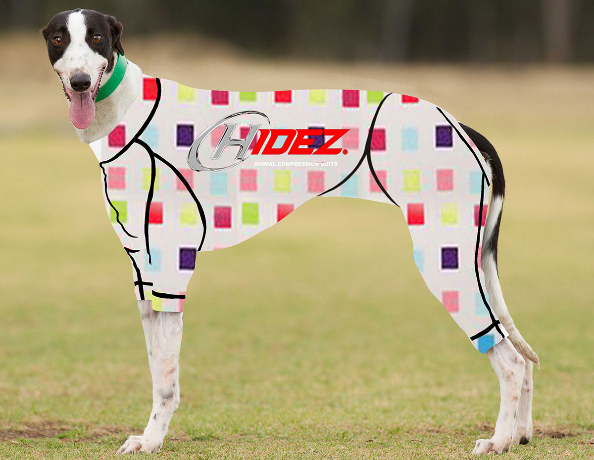 RACING-SUIT-PRINTED-MULTI-CHECK