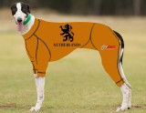 RACING-SUIT-PRINTED-NETHERLANDS-SUIT