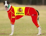 RACING-SUIT-PRINTED-SPAIN-SUIT-1