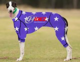 RACING-SUIT-PRINTED-STAR-PURPLE--WHITE