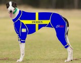 RACING-SUIT-PRINTED-SWEDEN